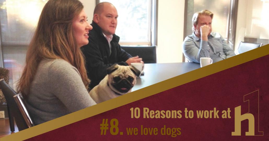 10 Reasons to Work at HorizonOne We love Dogs!