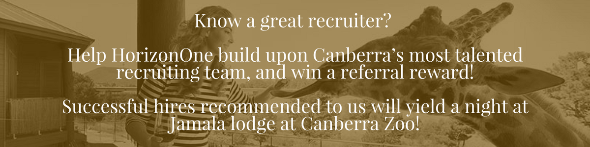 What's happening in Canberra's Job market? HorizonOne's Review federal election predictions, skills shortages, ACT region trends & observations jamala lodge canberra zoo recruitment