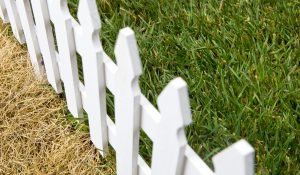 Evaluating a New Job Offer - Is the Grass Really Greener?